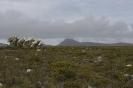 Tour am südlichen Kap von East London nach Kapstadt_157